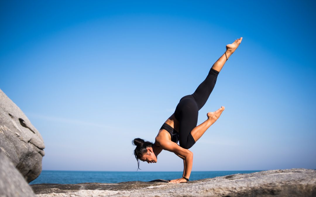 Image result for Explored Wellness